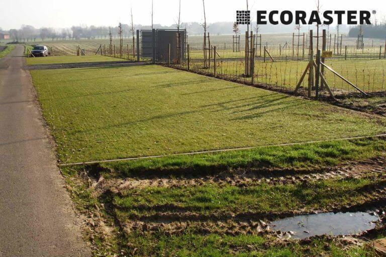 трава на экопарковке