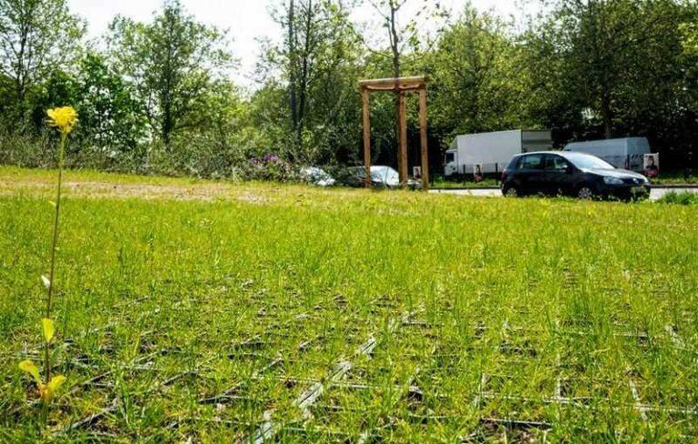 трава на зелёной парковке для автомобилей