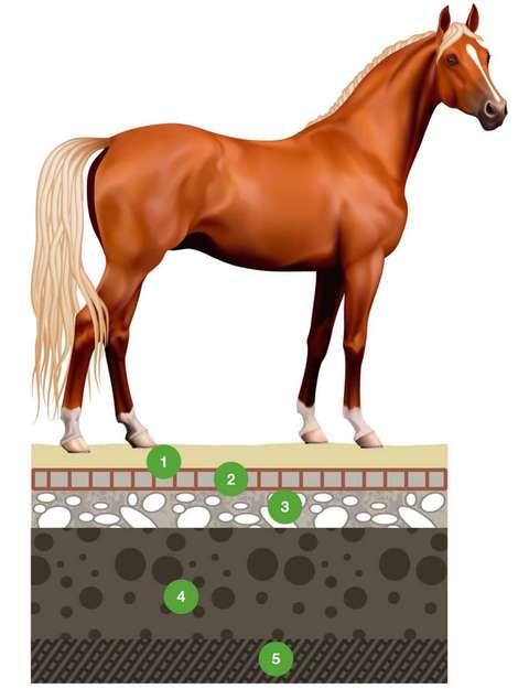 Полное основание под газонную решетку для лошадей