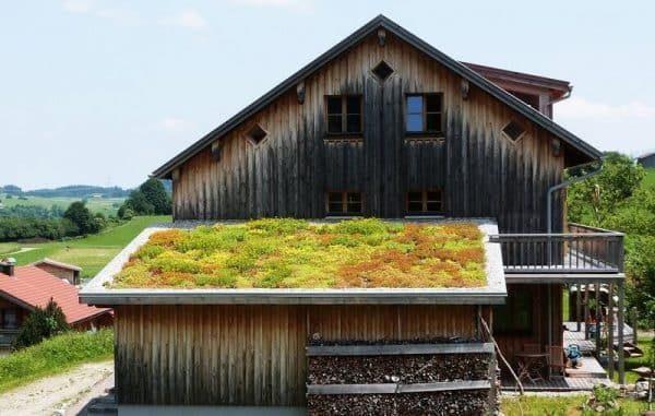 модули для озеленения крыш