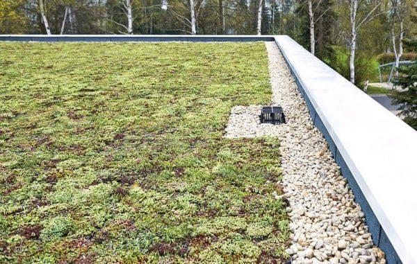 гравийная отсыпка на зеленой крыше