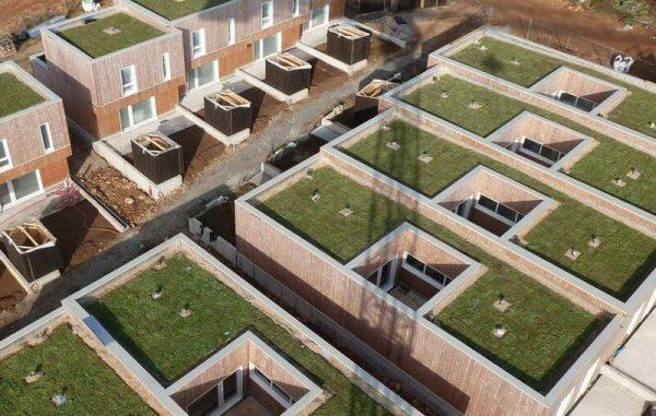 Озеленение плоской крыши ECOSEDUM