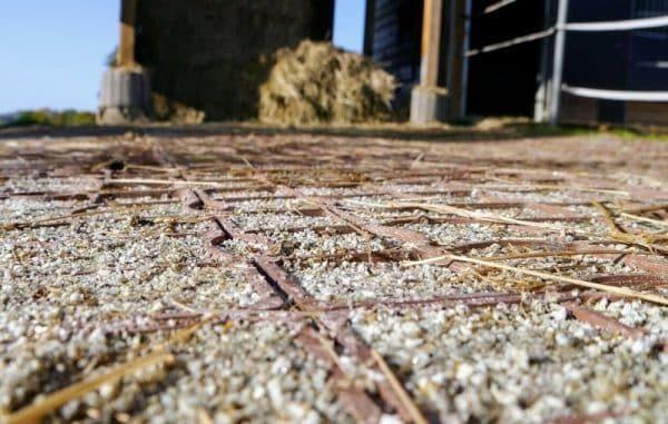 маленький секрет газонной решетки ECORASTER для лошади