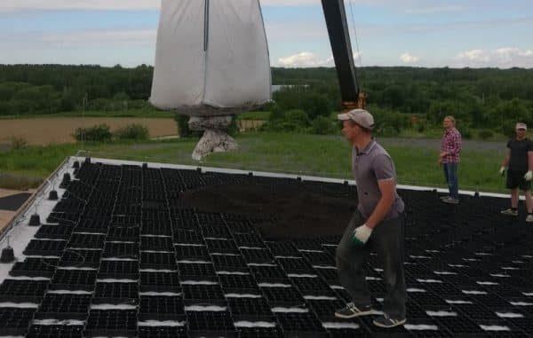 Озеленение крыши газонными решетками ECORASTER