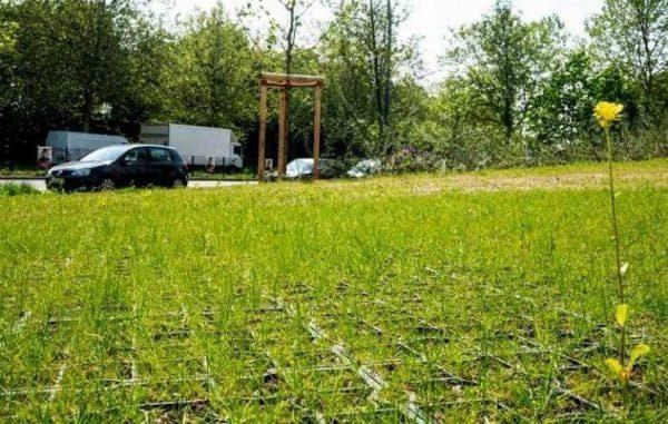 трава на зелёной экопарковке для автомобилей